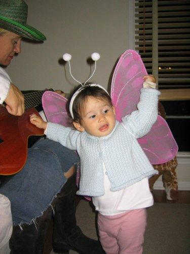 butterflycoco.jpg